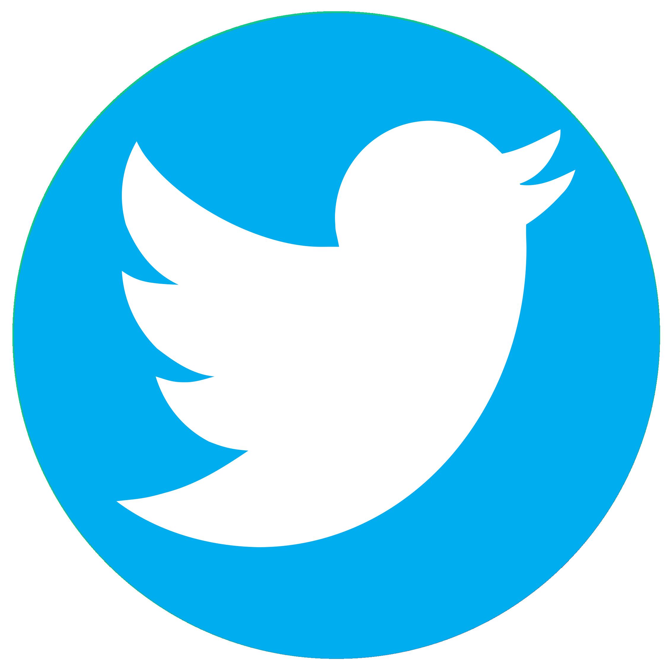 twitter logo web