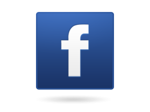 fb logo web